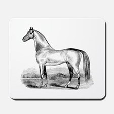 Quarter Horse Artwork Mousepad