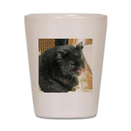 Black Hamster Shot Glass