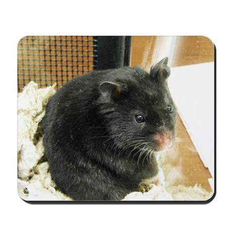 Black Hamster Mousepad