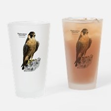 Peregrine Falcon Drinking Glass