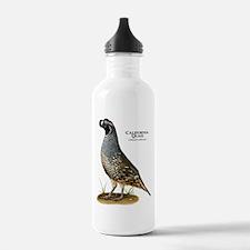 California Quail Water Bottle