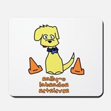 Agility Lab Mousepad