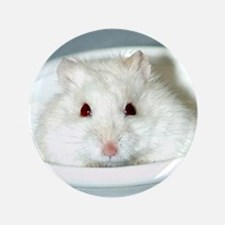 "White-Albino Hamster 3.5"" Button"