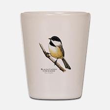 Black-Capped Chickadee Shot Glass