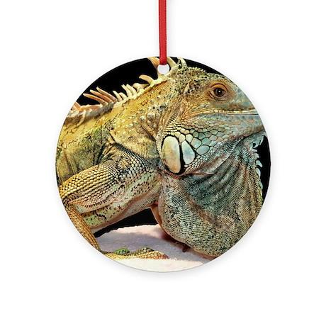 Iguana Photo Ornament (Round)