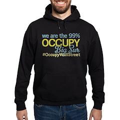 Occupy Big Sur Hoodie