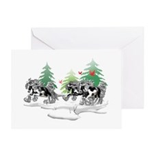 Gypsy Vanner White (D) Greeting Card