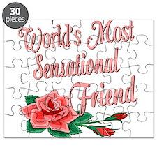 Sensational Friends Puzzle