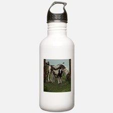 Painted Horse and Foal Water Bottle