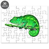 Chameleon Puzzles