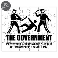 The Government Puzzle