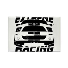 Extreme Mustang 05 2010 Rectangle Magnet