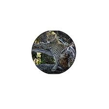 Leopard Cub Mini Button