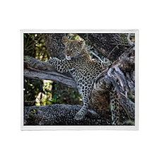 Leopard Cub Throw Blanket