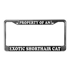 Property Exotic Shorthair Cat License Plate Frame