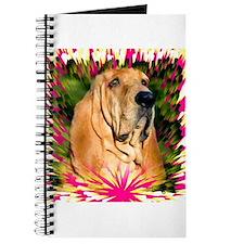 Bloodhound Journal