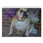 """Bulldog Wall Calendar """"C"""""""