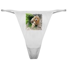 Goldendoodle Classic Thong
