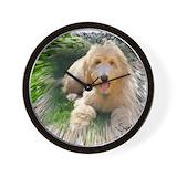 Goldendoodle Basic Clocks