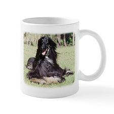 Afghan Hound AA017D-115 Mug