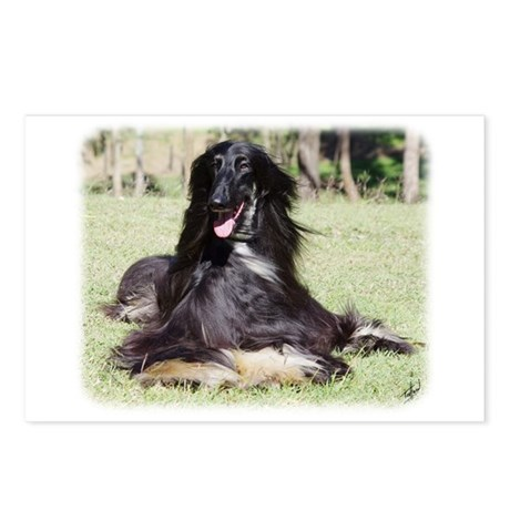 Afghan Hound AA017D-115 Postcards (Package of 8)