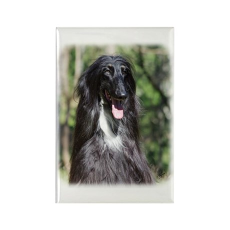 Afghan Hound AA017D-119 Rectangle Magnet (100 pack