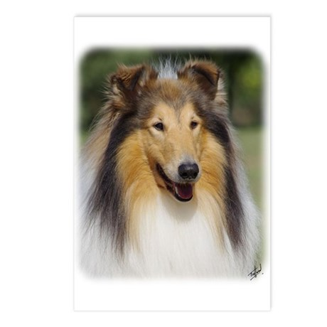 Collie Rough AA011D-031 Postcards (Package of 8)