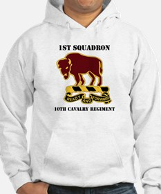 DUI - 1st Sqdrn - 10th Cavalry Regt with Text Hood