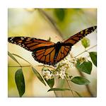 Monarch Tile Coaster