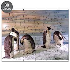 Penguins from Antarctica Puzzle
