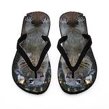 Squirrel Flip Flops