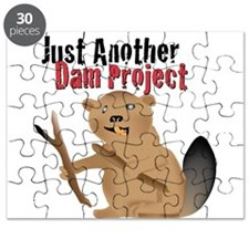 Another Dam Puzzle