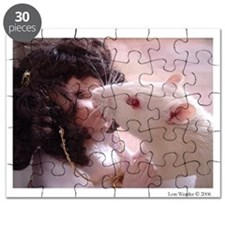 The Kiss Puzzle