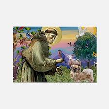 St. Francis & Tibetan Spaniel Rectangle Magnet