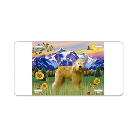 Wheaten in Mt. Country Aluminum License Plate