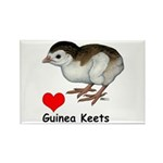 Love Guinea Keets Rectangle Magnet (100 pack)