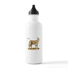 Serval Sports Water Bottle