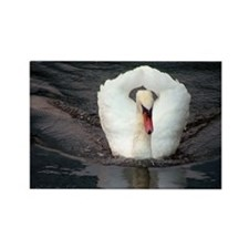 Swan #2 - Rectangle Magnet