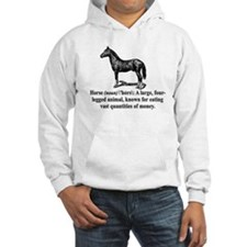 Definition of a Horse Hoodie