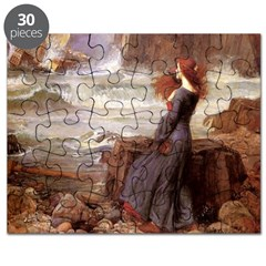 Miranda and the Tempest Puzzle
