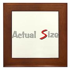Actual Size Framed Tile
