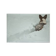 Snow Corgi Rectangle Magnet