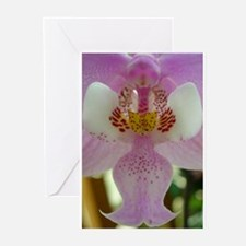 Orchid close up Greeting Cards (Pk of 10)