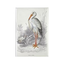 White Stork Bird Rectangle Magnet