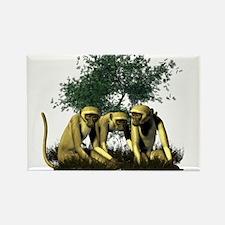 Monkeys Rectangle Magnet