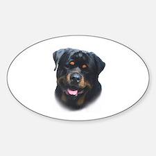 General -Rottweiler Head ( Ma Decal