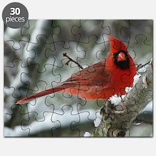 Cardinal Winter Puzzle