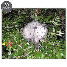 Opossum Cherry Tree Puzzle