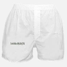 g37 l41d Boxer Shorts