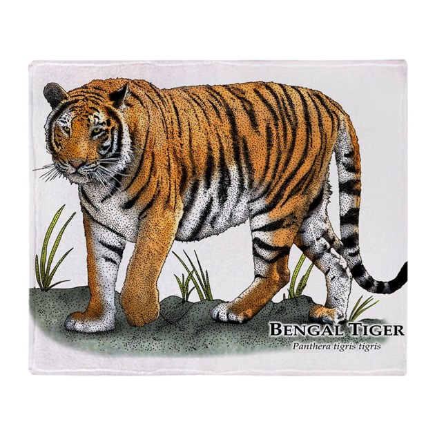 Bengal Tiger Throw Blanket By Wildlifearts